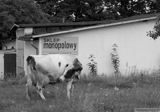 Nabiał czy monopol