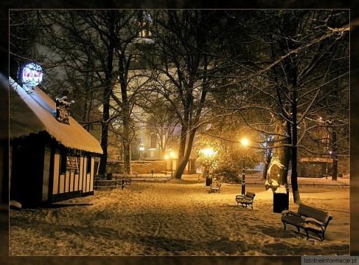 Pejzaż Zimowy 1