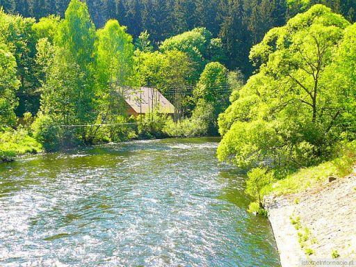 Rzeka bóbr
