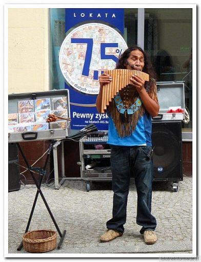 Muzykant z Andów