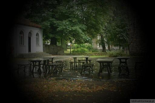 Deszcz w parku