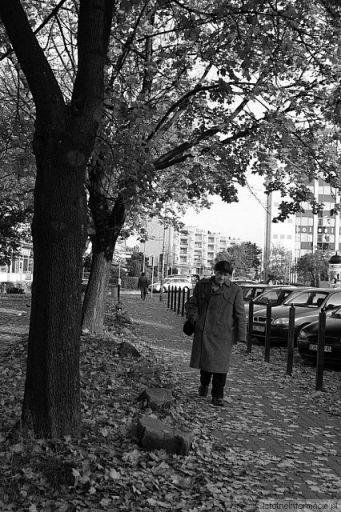 Jesień -życia
