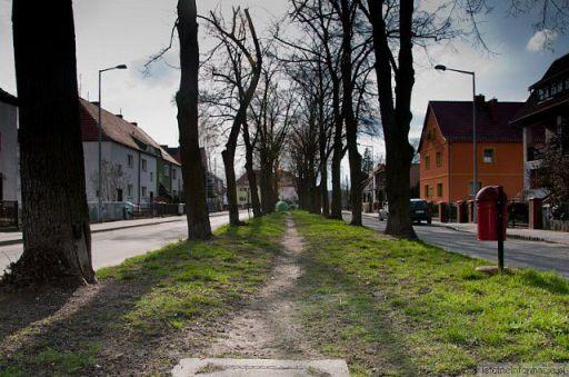 Wiosana 2010