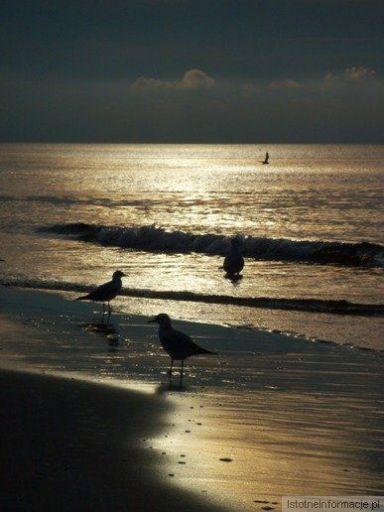 Morze, nasze morze
