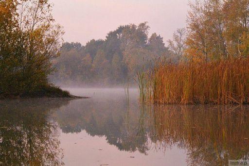 gdzie mgły delikatnością urzekają,barwy jesieni zlocistej w tafl