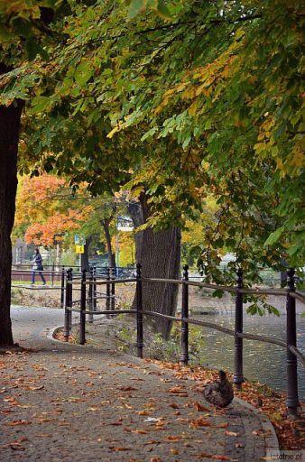 w moim  mieście -  jesień