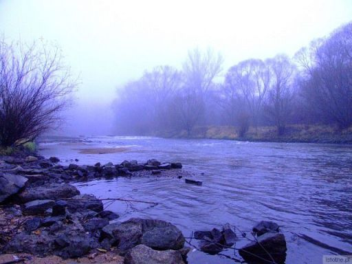 Rzeka Bóbr w listopadowy, mglisty dzień