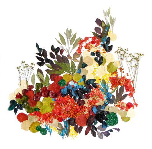 Florystyczny kolaz