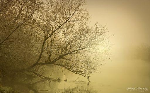 Rzeka Bóbr w Bolesławcu – Poranne listopadowe klimaty :)