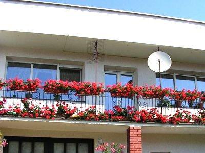 Balkon ozdobiony kwiatami