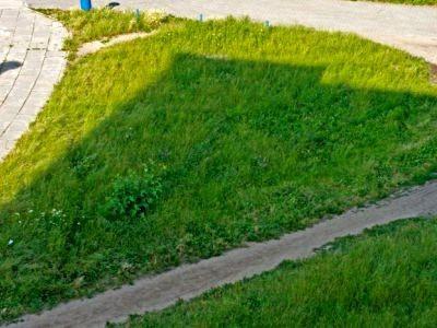Trawnik przy ulicy Małachowskiego