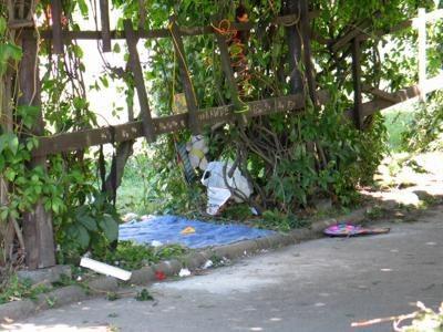 W przejściu pod pergolą wszędzie walają się śmieci