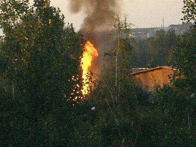 Słup ognia między drzewami