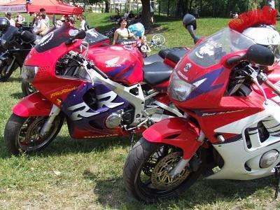 Motocykle członków stowarzyszenia Bolce