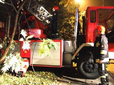 W akcji gaśniczej wykorzystano wóz strażacki z drabiną