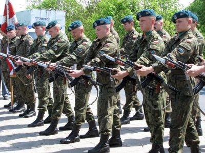 Salwę na cześć polskich żołnierzy oddała kompania honorowa 23 BA