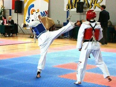 Jurtyna Szyposz (niebieski pancerz) zdobyła brązowy medal