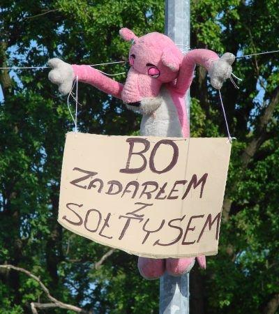 """Nad placem przed Domem Ludowym zawisła Różowa Pantera z napisem """"Bo zadarłem z sołtysem"""""""