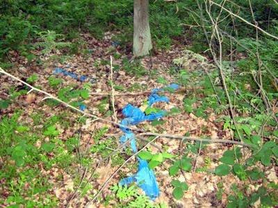 Pod warstwą liści i ziemi leżą worki ze śmieciami