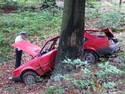 Kierowca Forda zjechał z drogi i uderzył w drzewo