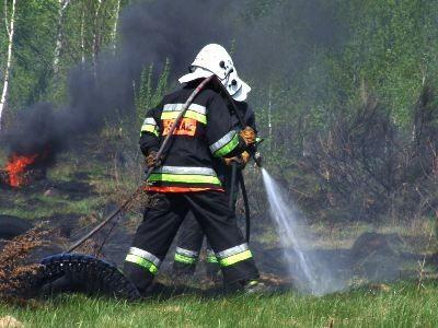 W akcji gaśniczej brało udział 7 zastępów straży pożarnej