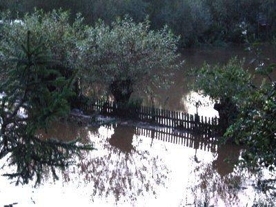 Rzeka podtopiła gospodarstwa w Milikowie i Gościszowie