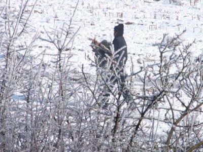 W poniedziałek kilku mężczyzn zabierało z pola martwe ptaki