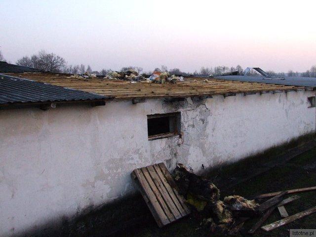 Spaliło się 20 m2 dachu kurnika