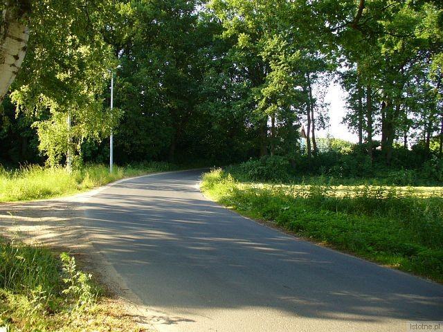 Zakręt na drodze do Krępnicy, z którego wypadł Hyundai