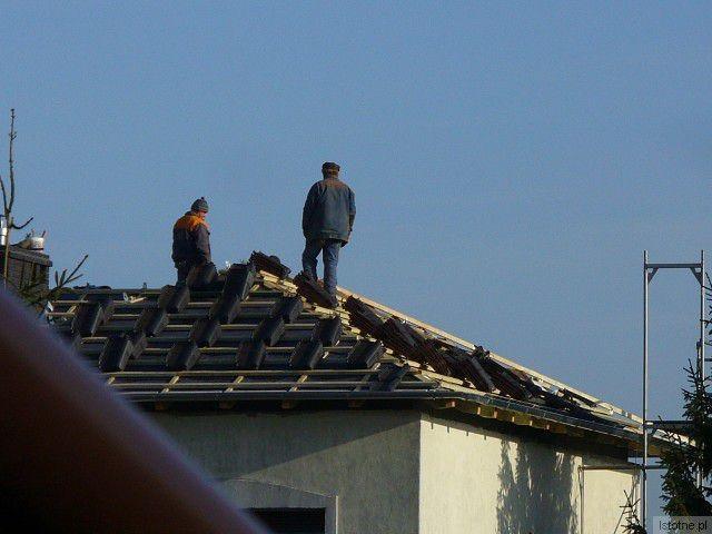Włos się na głowie jeży i krew w żyłach ścina, jak się patrzy na to ich latanie po dachu – powiedziała Czytelniczka