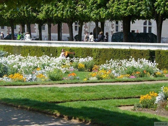 Bądźmy pewni, że przed kolejnymi wyborami rabatki wypięknieją i może będzie jak na tym zdjęciu (Francja, Blois, początek maja)