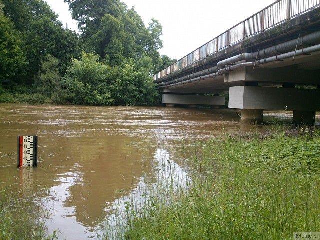 Rzeka Bóbr w Dąbrowie Bolesławieckiej. 5 czerwca 2013.