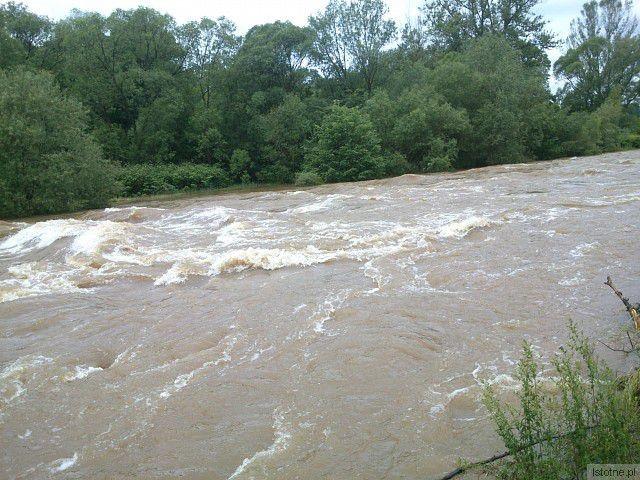 Rzeka Bóbr w okolicach ulicy Rajskiej. 5 czerwca 2013.