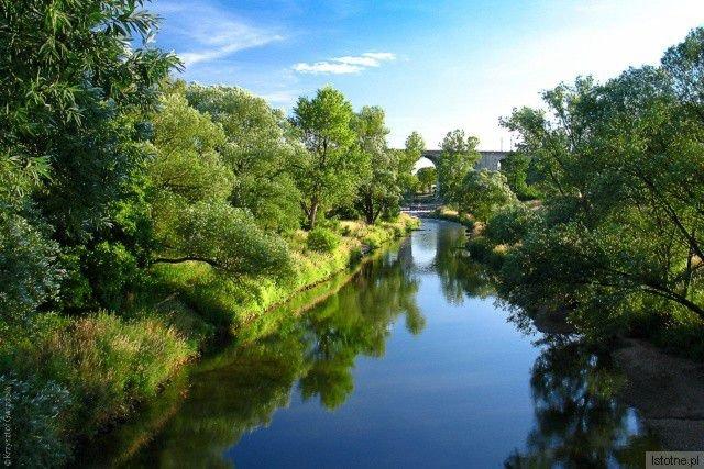 Rzeka Bóbr i wiadukt kolejowy w tle