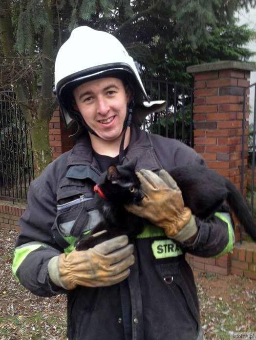 Strażak Michał Nowak zdjął kota z drzewa. Zwierzę weszło na wysokość 7 metrów
