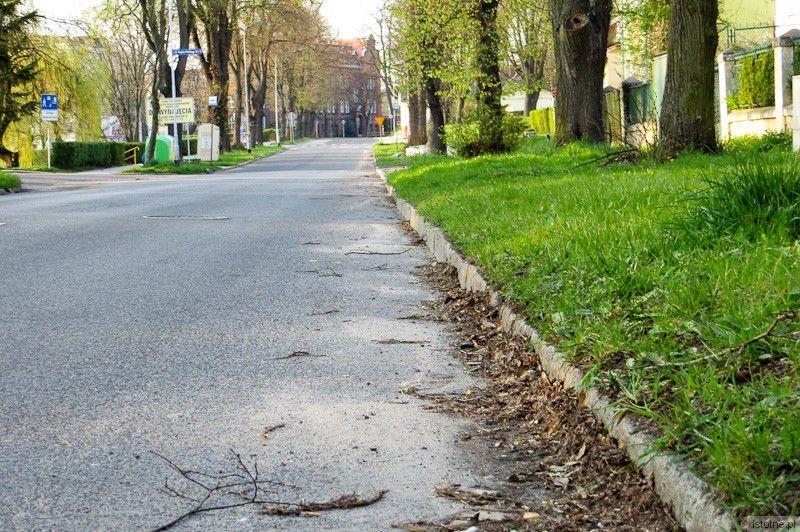 Powiatowa aleja Wojska Polskiego. Według starostwa jest czysta (niedziela, 6 kwietnia 2014)