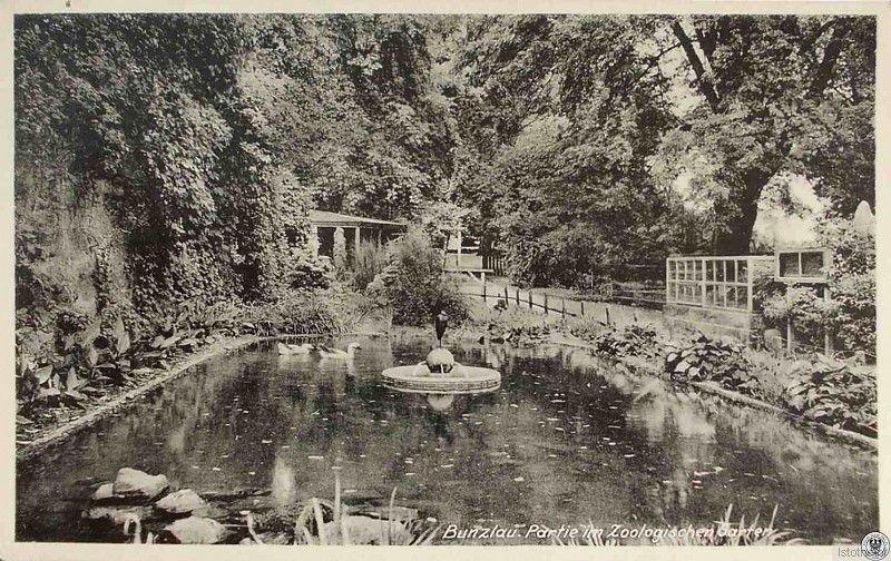 Przedwojenny ogród zoologiczny w latach 30. XX wieku