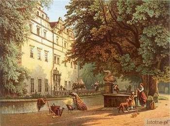 Pałac na litografii Winkelmanna w latach 70. XIX wieku
