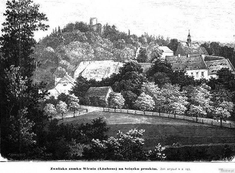Widok na zespół pałacowy i zamek w II połowie XIX wieku