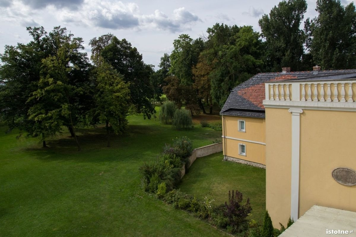 Widok na park z górnych pięter pałacu