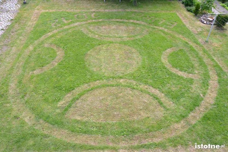 Trawnik na Euro 2012