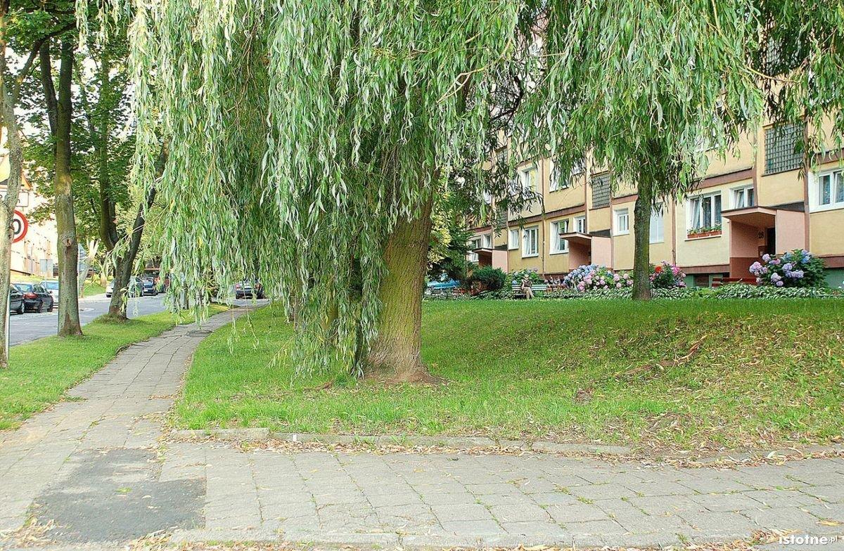 Ulica Karłowicza