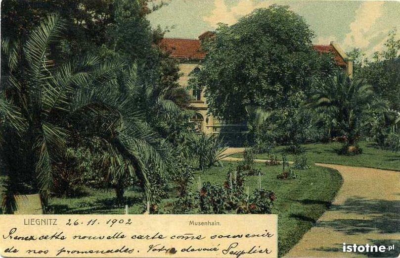 Pocztówka wysłana 26 listopada 1902 r.