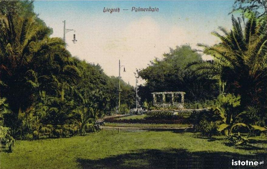 Pocztówka z początku XX w. z widokiem na pergolę