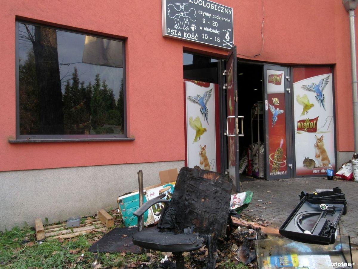Spalony sklep zoologiczny przy Zgorzeleckiej