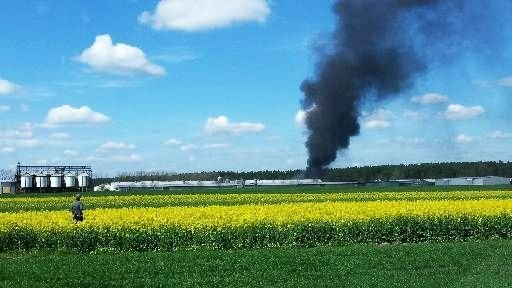 Pożar fermy drobiu w Kraśniku Dolnym