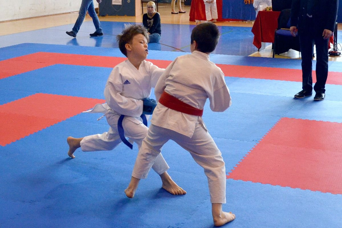 Karatecy