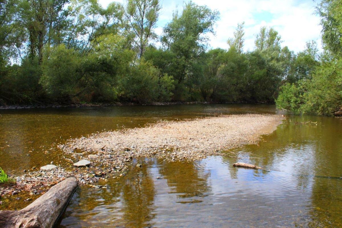 Susza odsłoniła koryto rzeki Bóbr