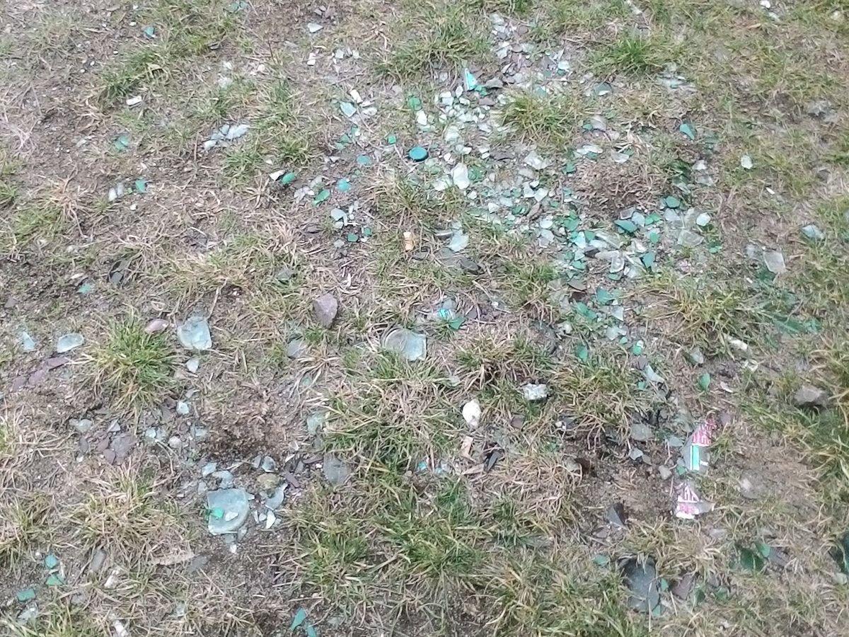 Bobrowa ścieżka jest regularnie zaśmiecana przez brudasów i nie nadążamy za nimi sprzątać