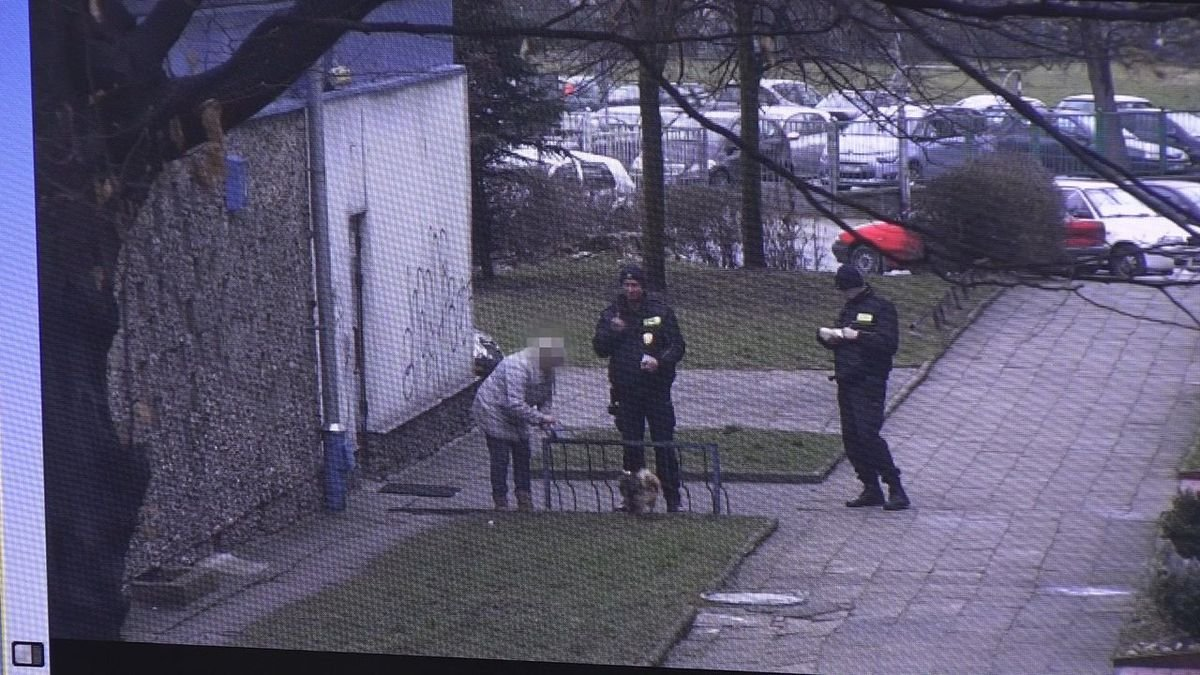 Bolesławianie nadal nie sprzątają po swoich pupilach
